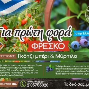 Νέα Γή – Αγροτική Κοινωνική Συνεταιριστική Επιχείρηση για τη  Διάδοση Προϊόντων της Ελληνικής Γης